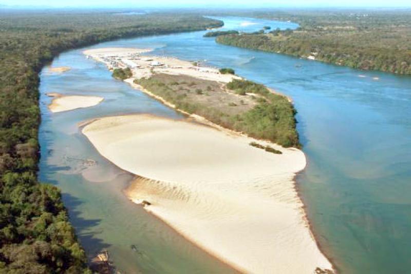 Peixe Tocantins fonte: www.jornaldotocantins.com.br